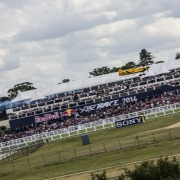 Ascot Race Day Recap